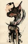 Doberman Print by Mark M  Mellon