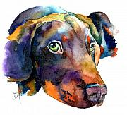 Puppy Painting Prints - Doberman Watercolor Print by Christy  Freeman
