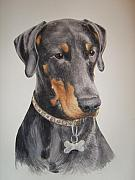Animal Portraits Prints - Dobermann Print by Keran Sunaski Gilmore