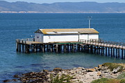Shack Prints - Dock At Point Reyes Calfornia . 7D16070 Print by Wingsdomain Art and Photography