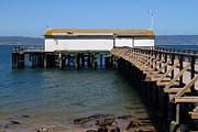 Shack Prints - Dock At Point Reyes Calfornia . 7D16073 Print by Wingsdomain Art and Photography