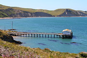 Boardwalks Photo Posters - Dock At Point Reyes Calfornia . 7D16133 Poster by Wingsdomain Art and Photography