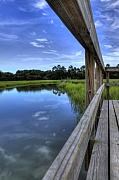 Lowcountry Metal Prints - Dock Lines Metal Print by Dustin K Ryan