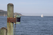 Sausalito Photos - Dock of the Bay by Marty Potter