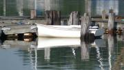 Boats Pyrography Prints - Dock Side Reflections Print by Thomas Theroux