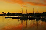 Tasmania Prints - Docked At Sun Set Print by Kathryn Potempski