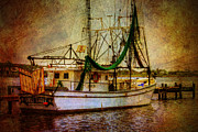 Barry Jones Metal Prints - Docked in Backbay Metal Print by Barry Jones