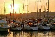 Warm Summer Prints - Docked Yachts Print by Carlos Caetano
