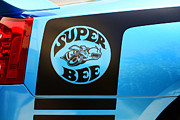Super Bee Posters - Dodge Charge Super Bee logo  Poster by Paul Ward