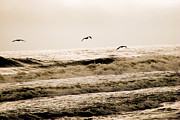 Rehoboth Beach Prints - Dodging The Waves Print by Trish Tritz