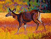 Whitetail Deer Painting Framed Prints - Doe III Framed Print by Marion Rose