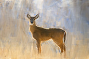 Deer Digital Art Metal Prints - Doe Portrait Metal Print by Ron Jones