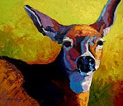 Whitetail Deer Painting Framed Prints - Doe Portrait V Framed Print by Marion Rose