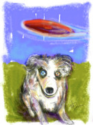 Frisbee Framed Prints - Dog and Frisbee Framed Print by Russell Pierce