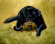 Black Lab Mixed Media - Dog and Helmet by Aida Hall