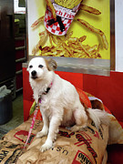 Potato Art - Dog at Carnival by Susan Savad