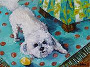 Maltese Dog Posters - Dog At Play Poster by Outre Art Stephanie Lubin