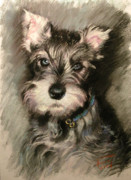 Dog Portrait Pastels - Dog in Blue Collar by Ylli Haruni