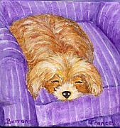 Frances Gillotti - Dog Painting Sleeping