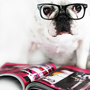 Humor Prints - Dog With Glasses Print by Retales Botijero