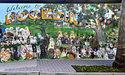 Mural Photos - Dogedin by David Lee Thompson
