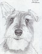 Pencil Drawing Framed Prints - Doggie Framed Print by Jose Valeriano