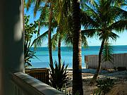 Beach Scenes Photo Posters - Dogs Beach Key West FL Poster by Susanne Van Hulst