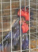 Cage Painting Metal Prints - Doin Time Metal Print by Marsha Elliott
