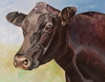 Black Painting Posters - Dolly the Angus Cow Poster by Toni Grote