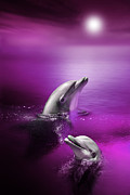 Moonlit Digital Art Prints - Dolphin Delights Print by Julie L Hoddinott
