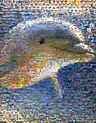 Dolphins Digital Art - Dolphin Nature Mosaic by Paul Van Scott