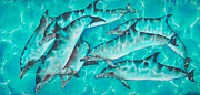Silk On Canvas Metal Prints - Dolphin Pod Metal Print by Daniel Jean-Baptiste