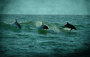 Panama City Beach Art - Dolphins by Sandy Keeton