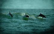 Dolphins Print by Sandy Keeton
