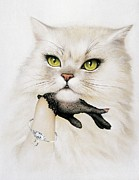 Petcare Prints - Domestic Cat, Conceptual Image Print by Smetek