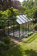 Self-control Framed Prints - Domestic Greenhouse In Garden. Framed Print by Mark Williamson