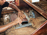 Hand-made Prints - Dominican Cigars Made by Hand Print by Heather Kirk