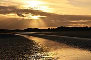 Martina Fagan - Donabate Beach