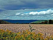 Cornfield Photos - Done for Another Season by Christian Mattison