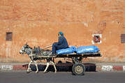 Moroccan Framed Prints - Donkey And Cart Transportation Framed Print by Johnny Greig