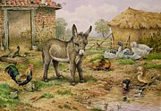 Cock Paintings - Donkey and Farmyard Fowl  by Carl Donner