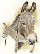 Donkey Mixed Media Framed Prints - Donkey Framed Print by Barbara Keith