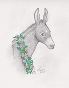 Donkey Mixed Media Framed Prints - Donkey Bedecked Framed Print by Amy Peare