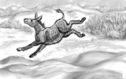 Donkey Drawings Framed Prints - Donkey Frolicking in the Snow Framed Print by Dawn Senior-Trask
