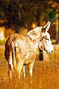 Tennessee Farm Digital Art Prints - Donkey Print by Paul Bartoszek