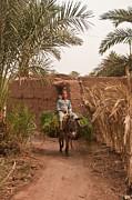 Nabucodonosor Perez - Donkey ride
