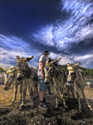 Donkey Photo Metal Prints - Donkey Rides Metal Print by Meirion Matthias