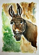 Donkey Drawings Prints - Donkey Print by Therese Alcorn