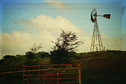 Ranch Life Prints - Dont forget to write home Print by Toni Hopper