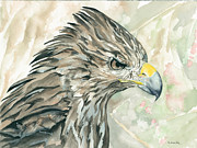 Red-tailed Hawk Paintings - Dont Mess With Me by Kimberly Lavelle